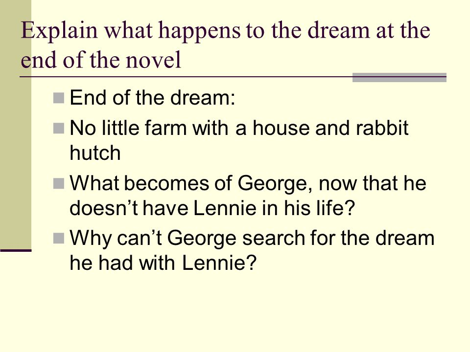 Explain what happens to the dream at the end of the novel
