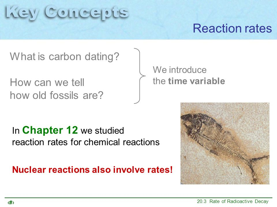 Reaction rates What is carbon dating