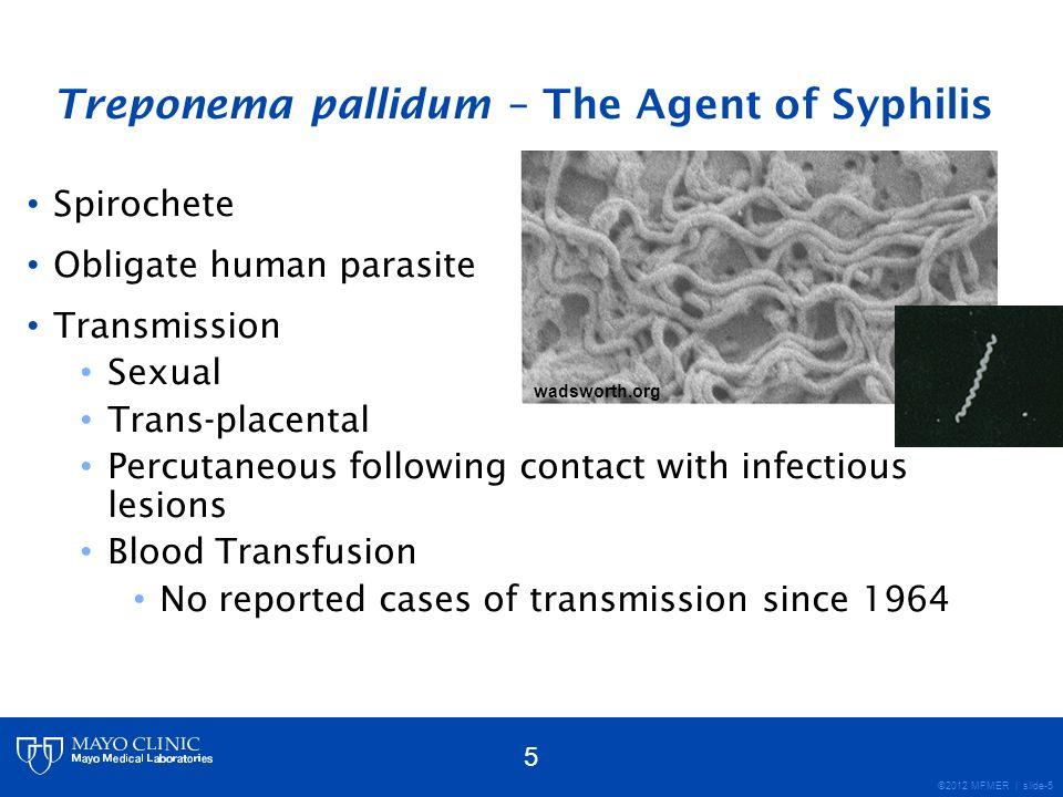 Treponema pallidum – The Agent of Syphilis
