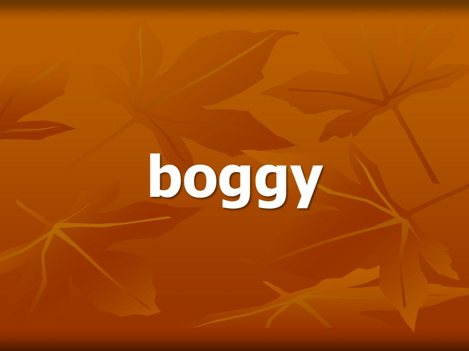boggy