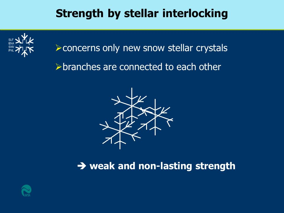 Strength by stellar interlocking  weak and non-lasting strength