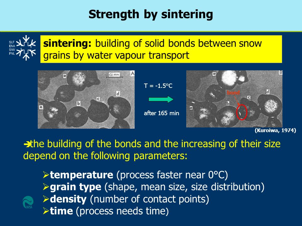 Strength by sintering sintering: building of solid bonds between snow grains by water vapour transport.