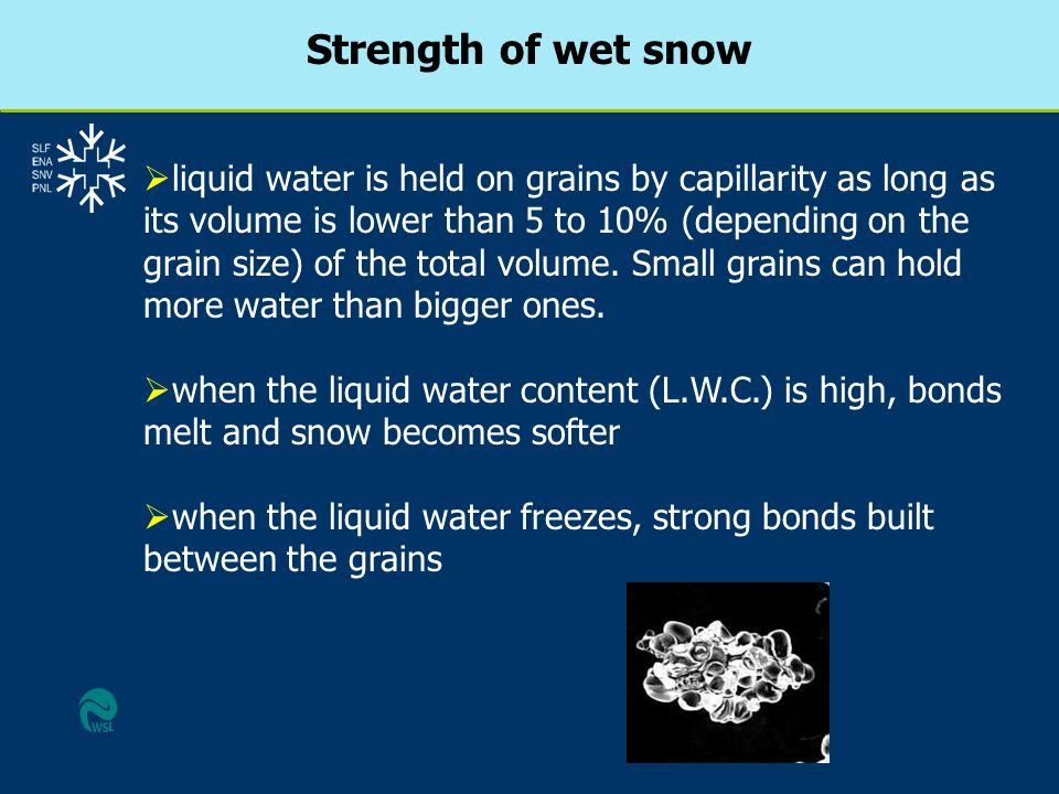 Strength of wet snow