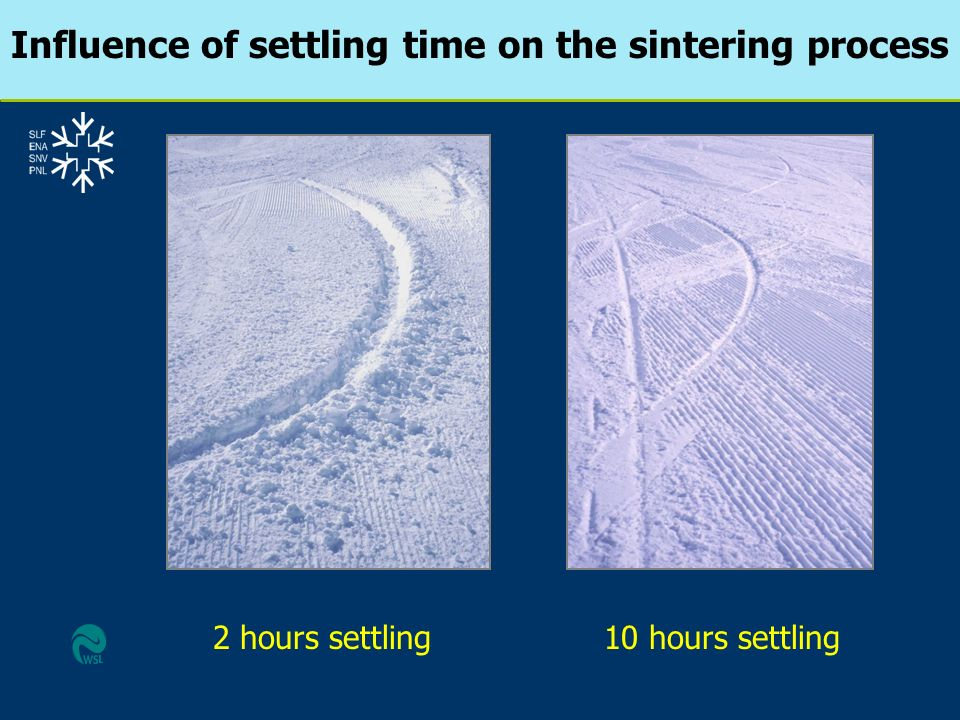 Influence of settling time on the sintering process
