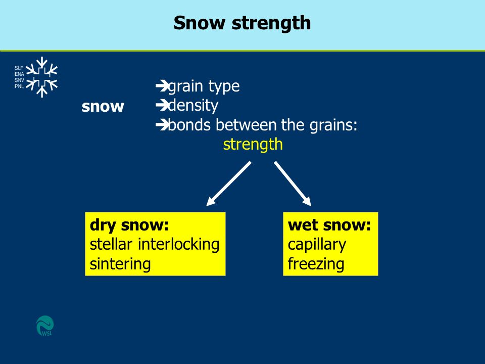Snow strength grain type density bonds between the grains: strength