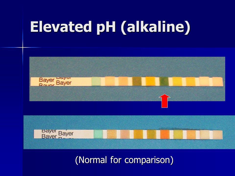 Elevated pH (alkaline)