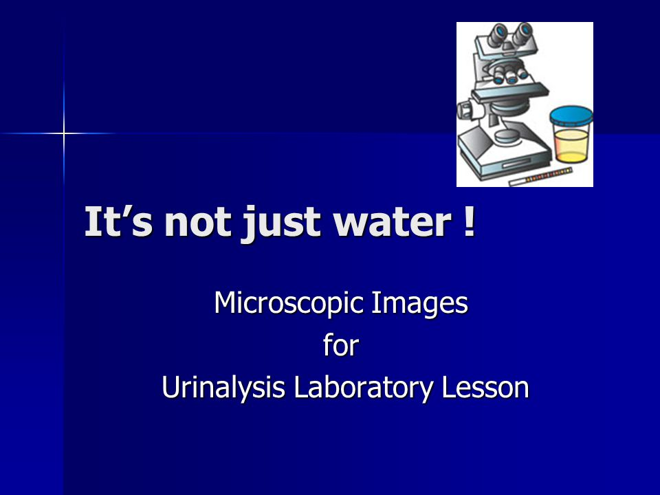 Microscopic Images for Urinalysis Laboratory Lesson
