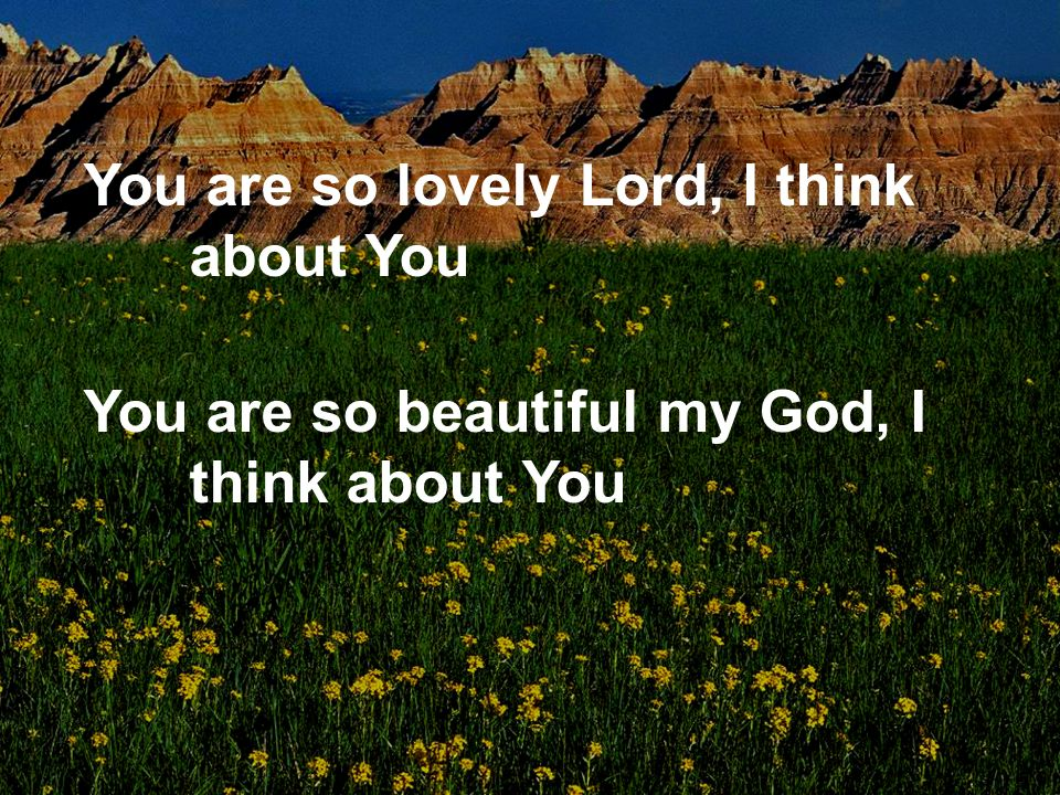 You are so lovely Lord, I think about You