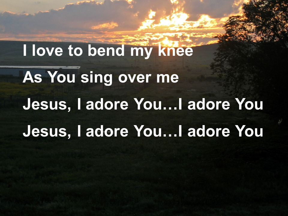 I love to bend my knee As You sing over me Jesus, I adore You…I adore You