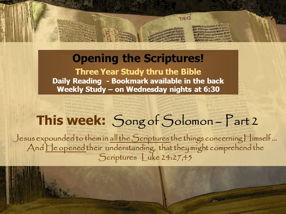 This week: Song of Solomon – Part 2