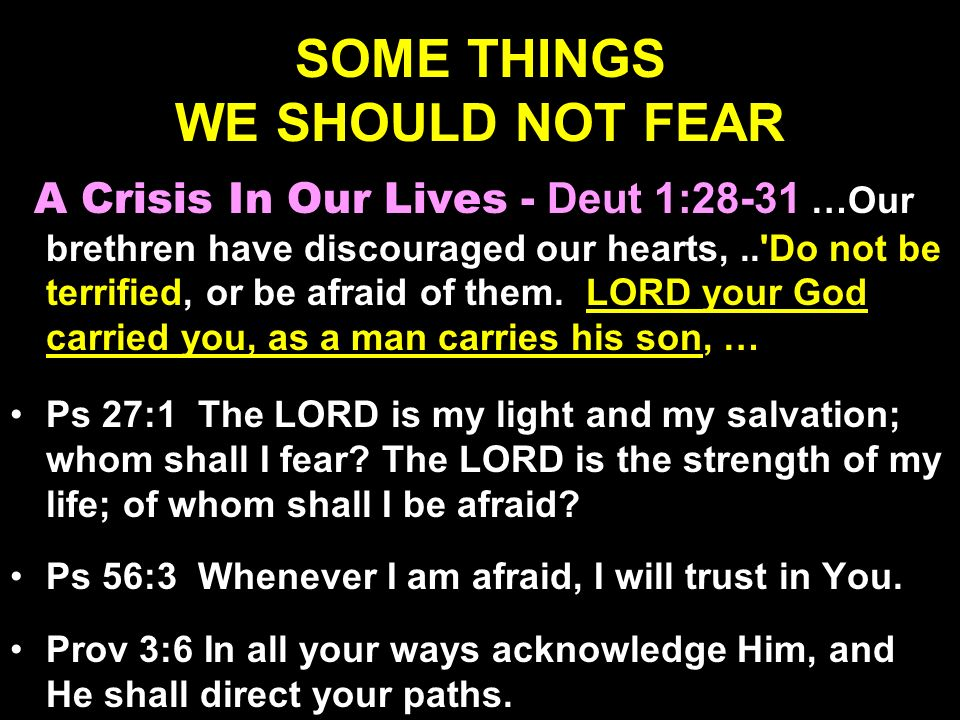 SOME THINGS WE SHOULD NOT FEAR