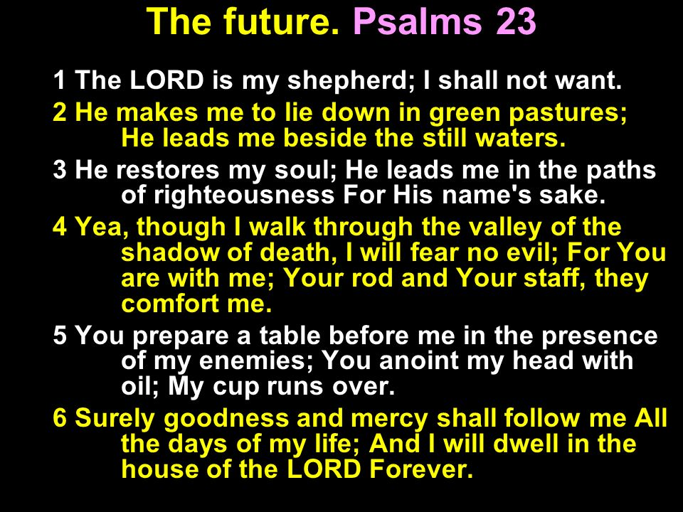 The future. Psalms 23 1 The LORD is my shepherd; I shall not want.