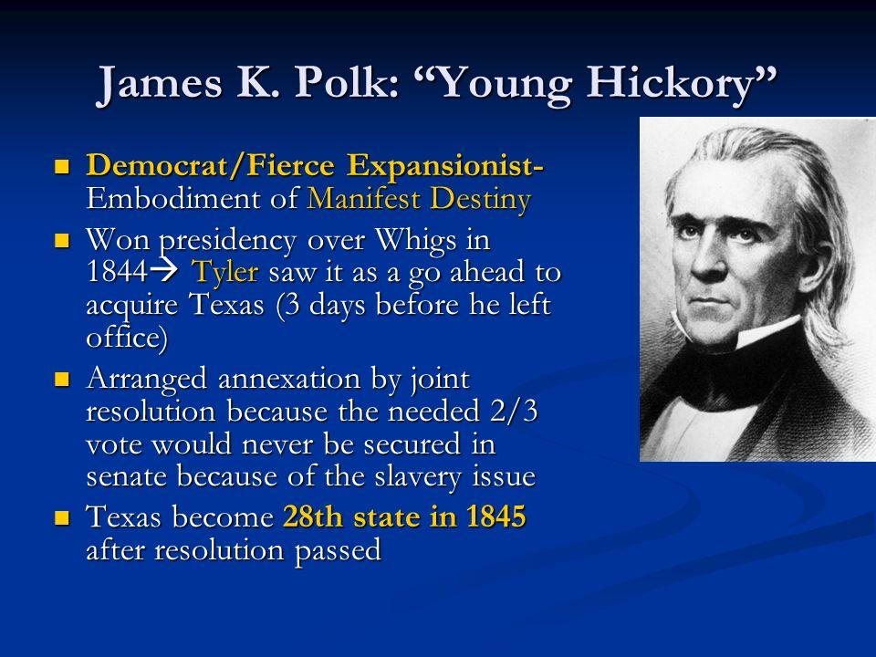 James K. Polk: Young Hickory