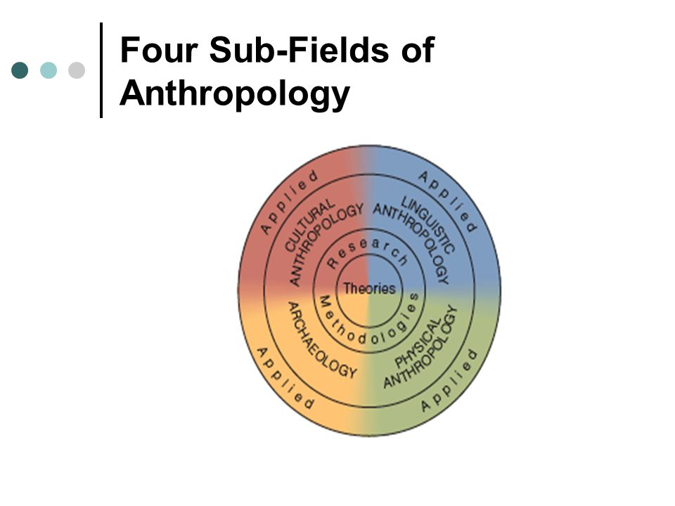 Four Sub-Fields of Anthropology