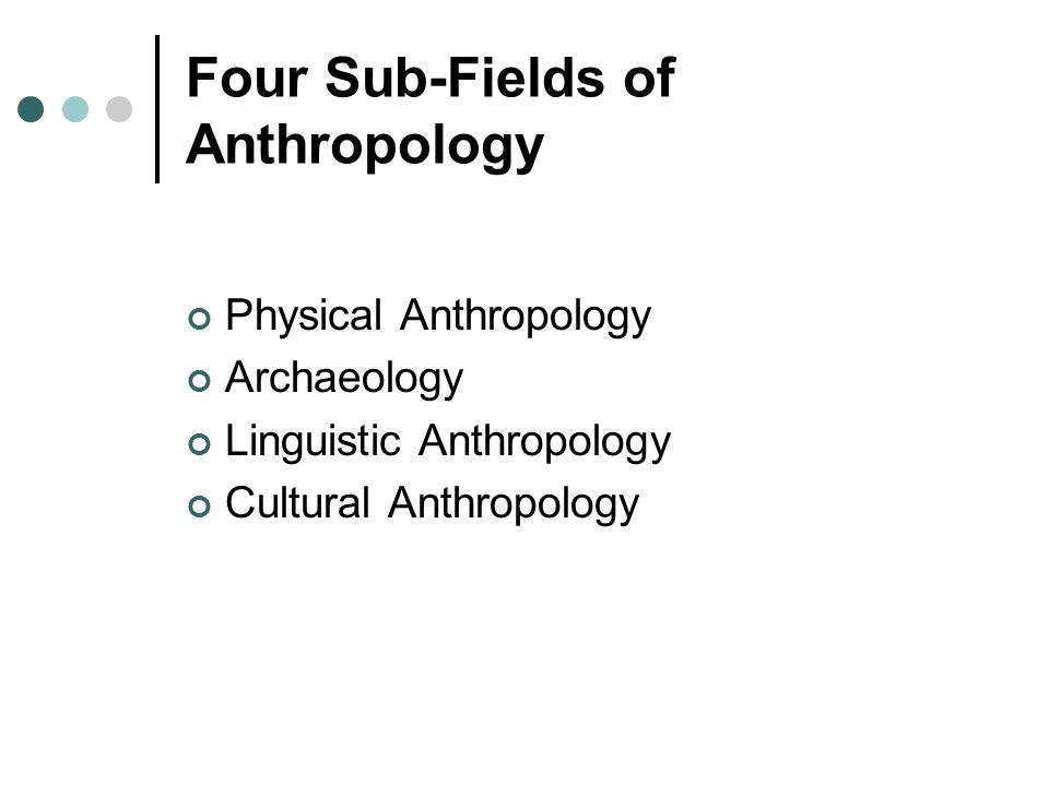 four fields of anthropology With increased interest in the field, the vassar college anthropology department was established in 1939 the four field concept of anthropology advocated.