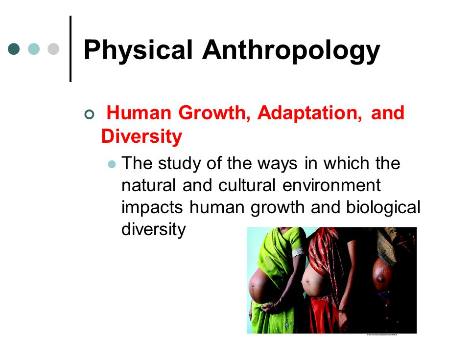 physical anthropology research paper
