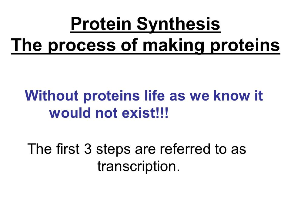 The process of making proteins