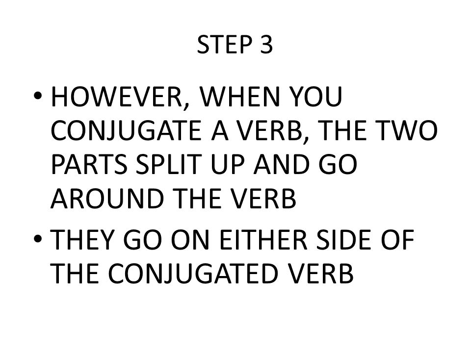 THEY GO ON EITHER SIDE OF THE CONJUGATED VERB