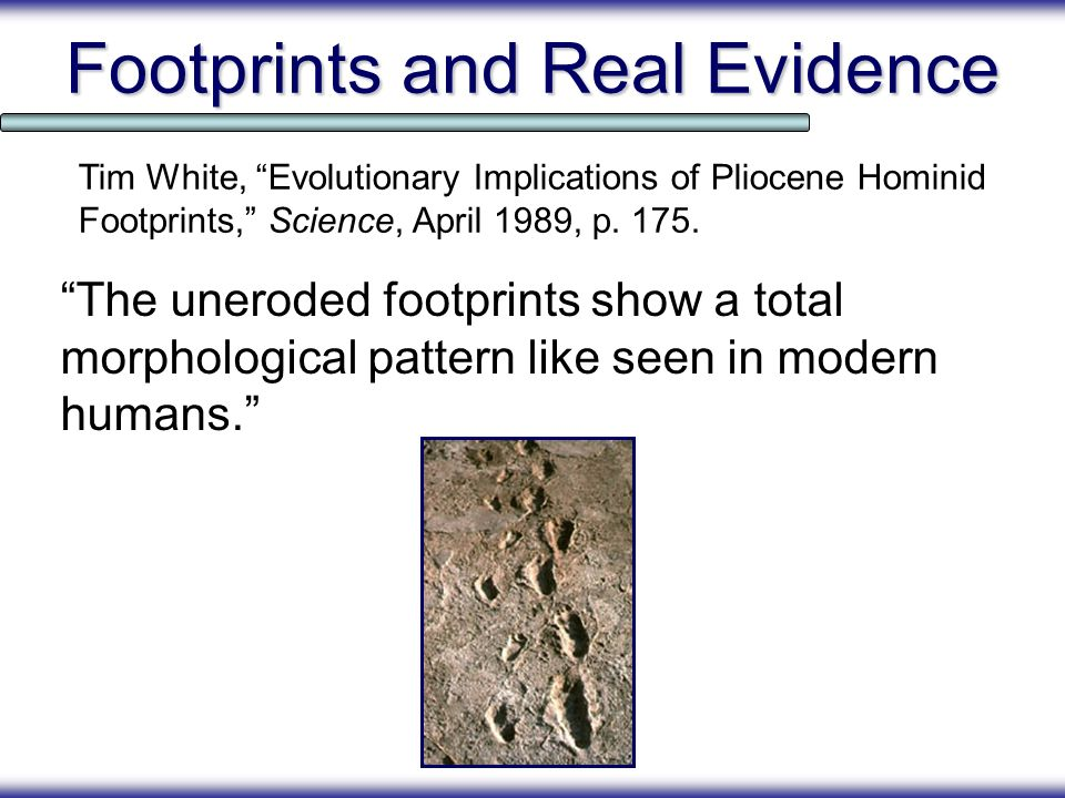 Footprints and Real Evidence