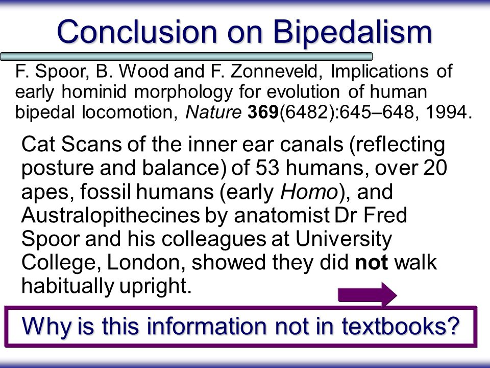 Conclusion on Bipedalism
