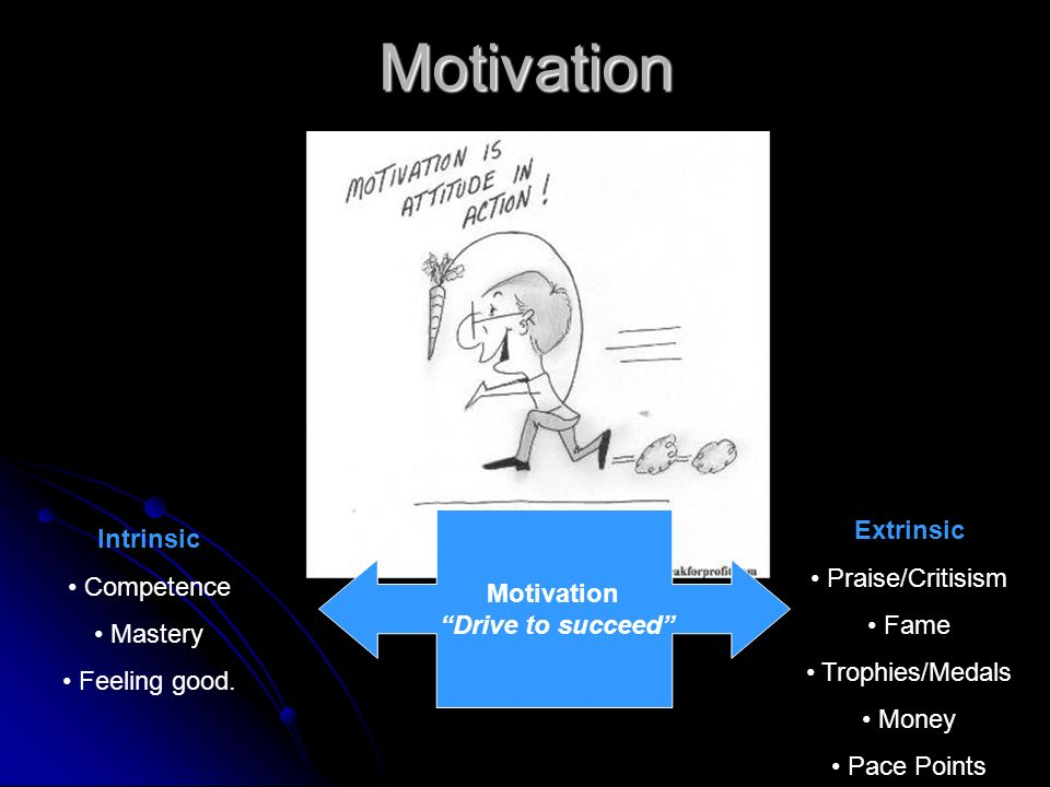 Motivation Extrinsic Intrinsic Praise/Critisism Competence Motivation