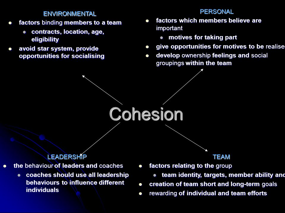 Cohesion PERSONAL factors which members believe are important