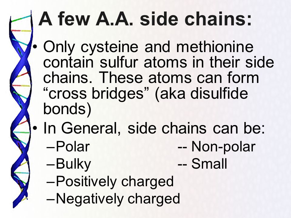 The Central Dogma of Genetics - ppt download