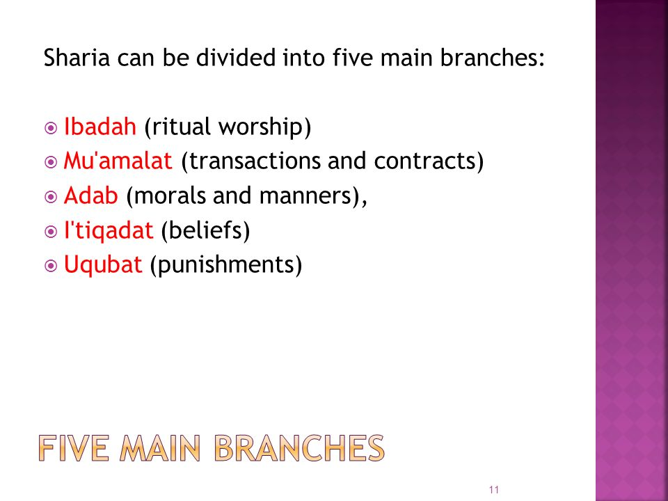 Five main branches Sharia can be divided into five main branches: