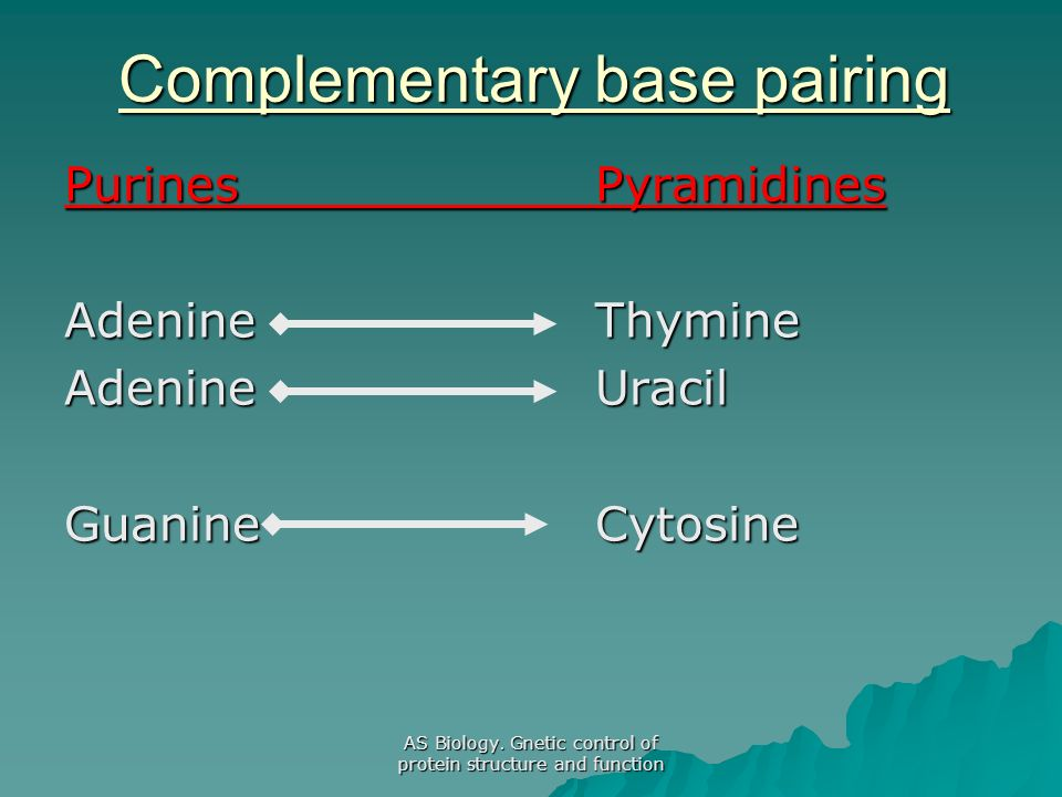 Complementary base pairing