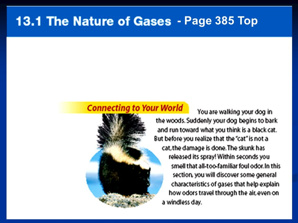 - Page 385 Top