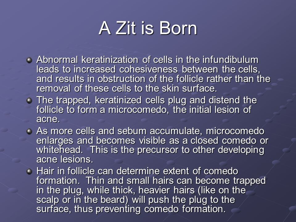 A Zit is Born