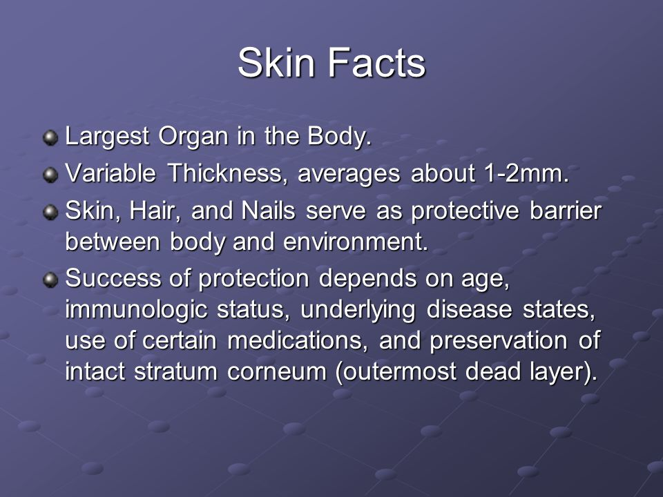Skin Facts Largest Organ in the Body.