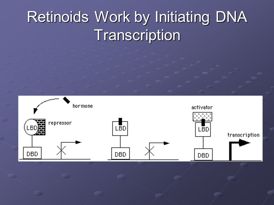 Retinoids Work by Initiating DNA Transcription