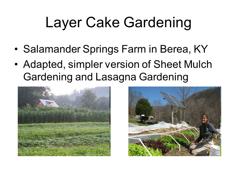 Layer Cake Gardening Salamander Springs Farm in Berea, KY