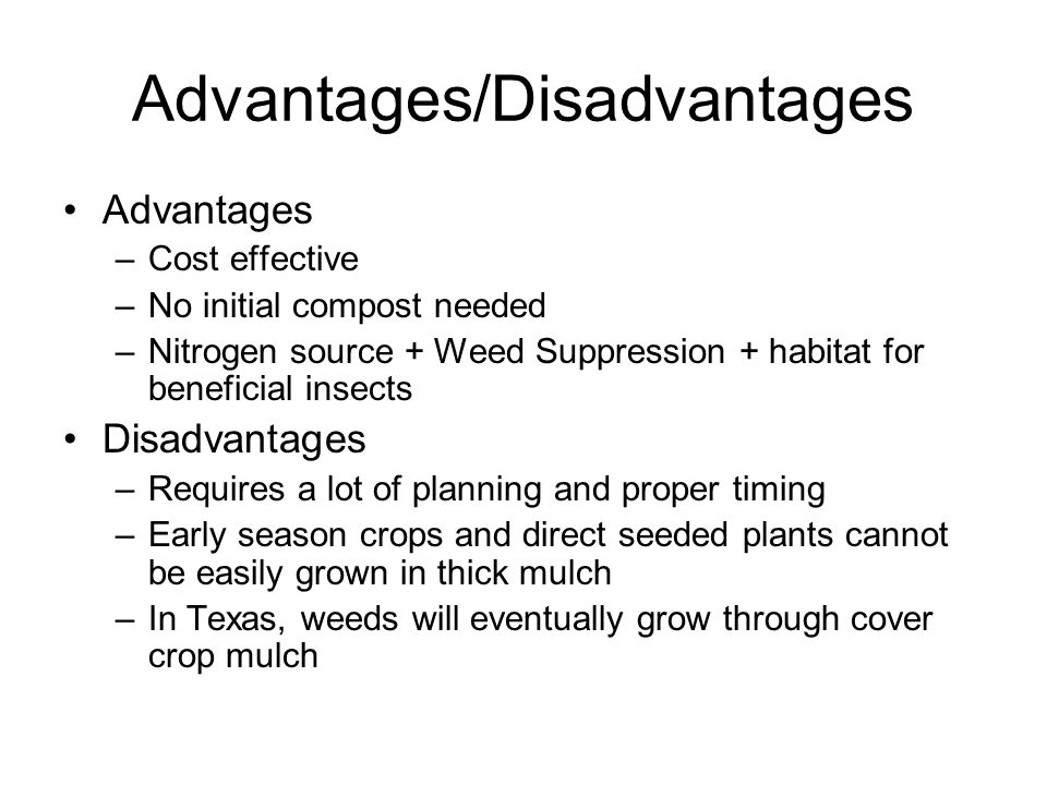 Advantages & Disadvantages of Rain