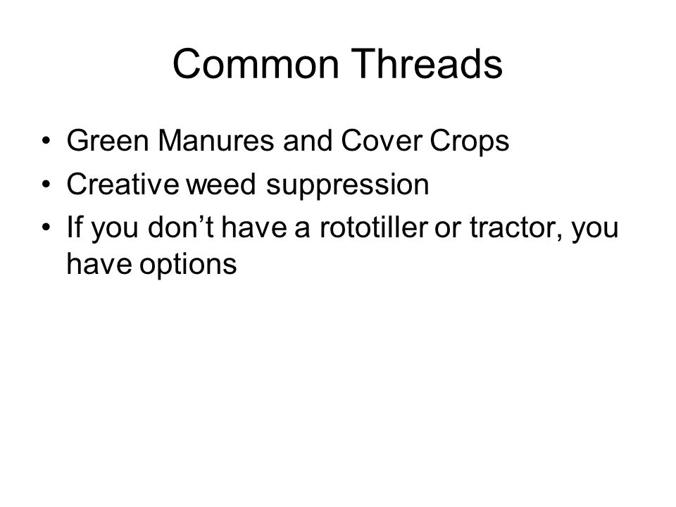 Common Threads Green Manures and Cover Crops Creative weed suppression