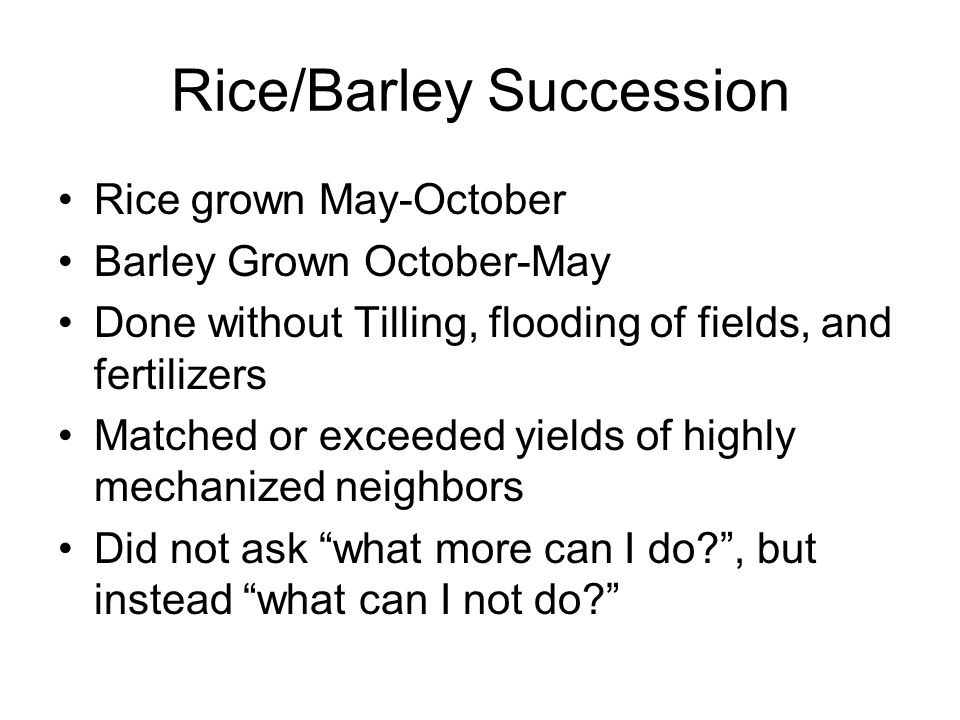 Rice/Barley Succession