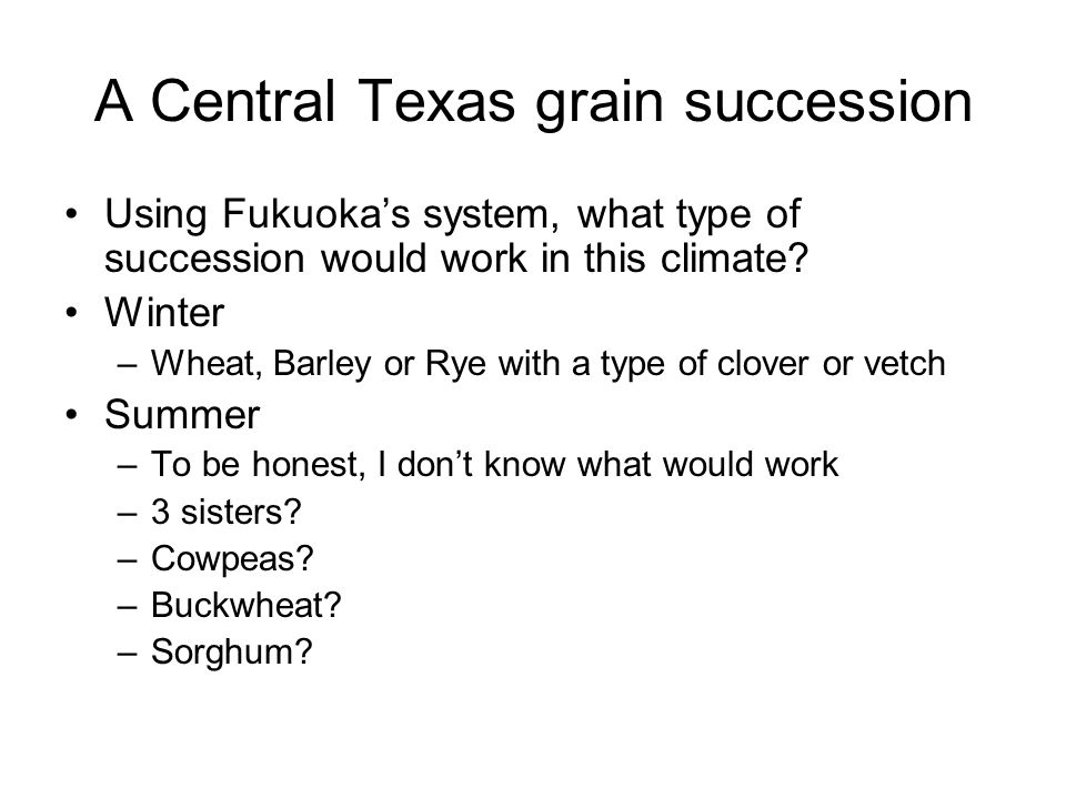 A Central Texas grain succession