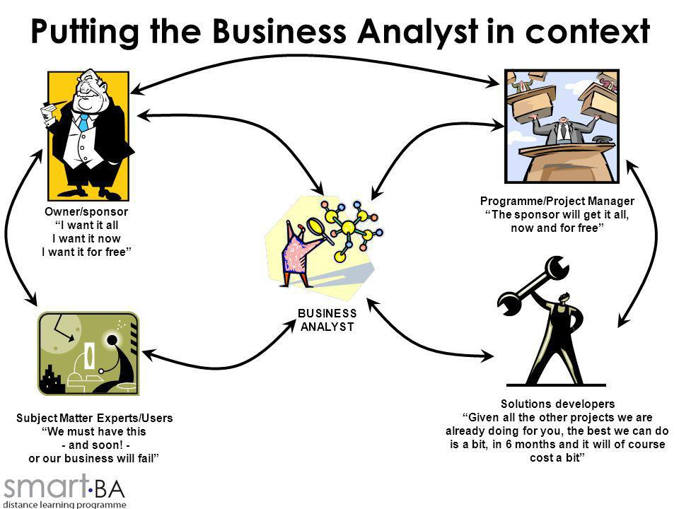 Putting the Business Analyst in context