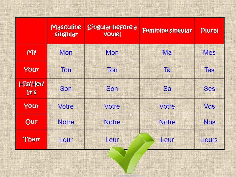 Singular before a vowel
