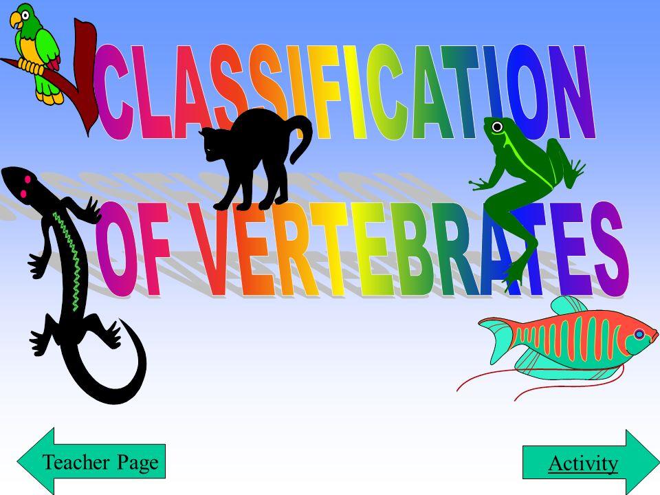 CLASSIFICATION OF VERTEBRATES Teacher Page Activity
