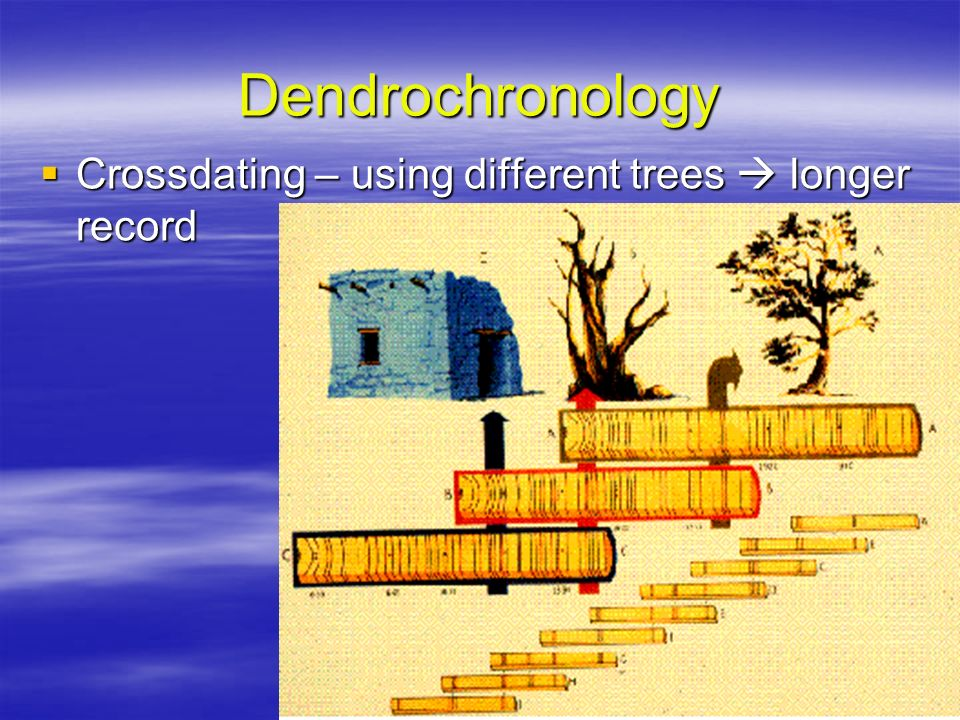 Dendrochronology Crossdating – using different trees  longer record