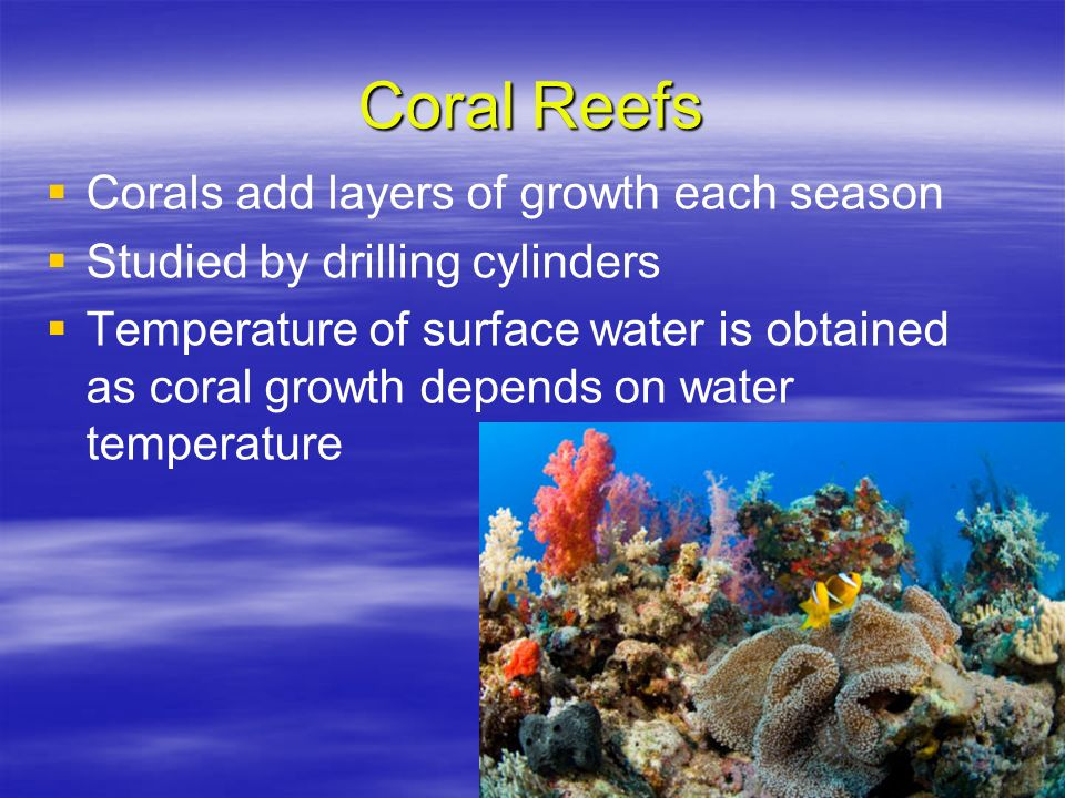 Coral Reefs Corals add layers of growth each season