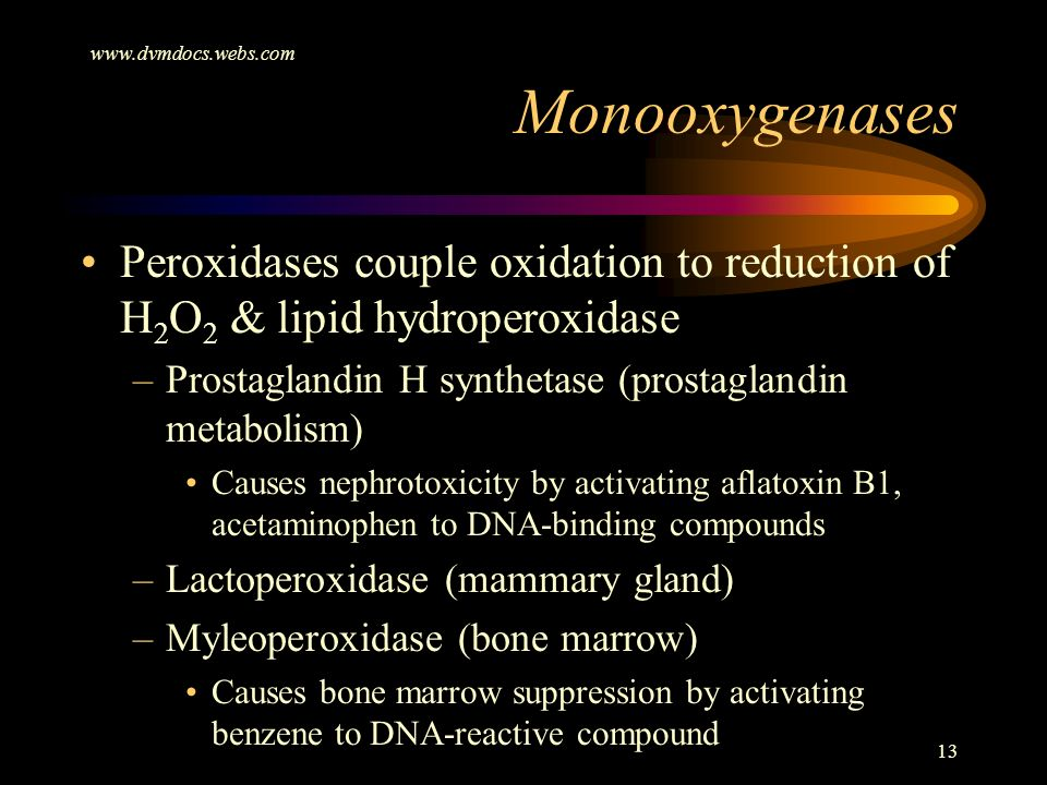 www.dvmdocs.webs.com Monooxygenases. Peroxidases couple oxidation to reduction of H2O2 & lipid hydroperoxidase.