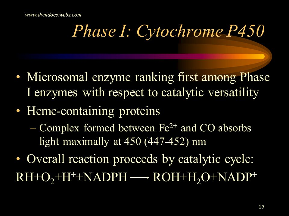 www.dvmdocs.webs.com Phase I: Cytochrome P450. Microsomal enzyme ranking first among Phase I enzymes with respect to catalytic versatility.