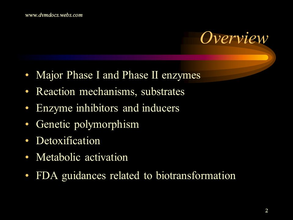Overview Major Phase I and Phase II enzymes