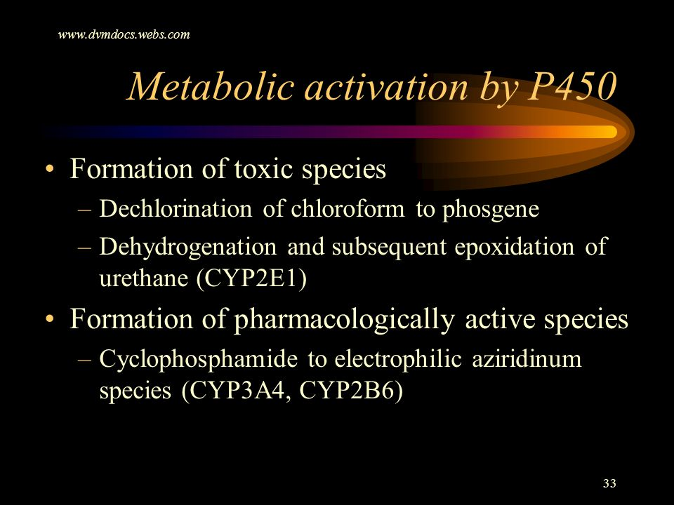 Metabolic activation by P450