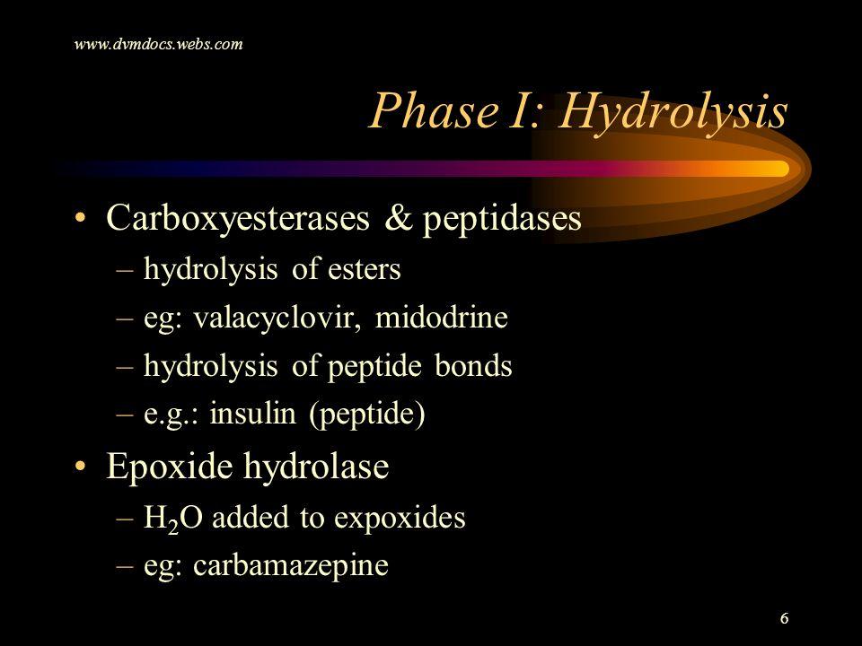 Phase I: Hydrolysis Carboxyesterases & peptidases Epoxide hydrolase