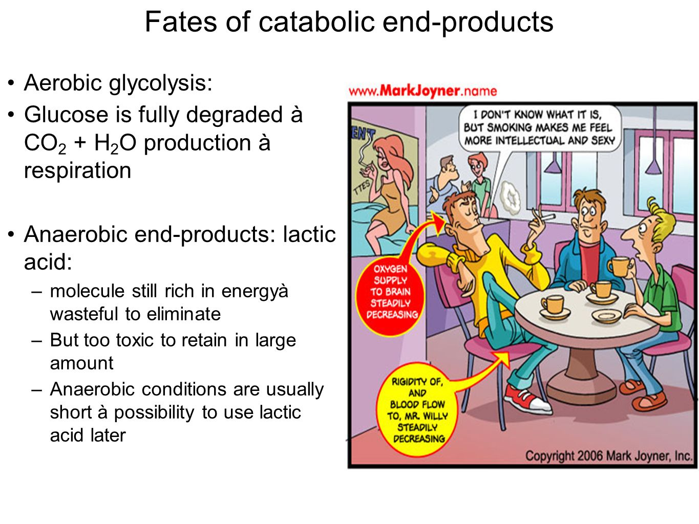 Fates of catabolic end-products