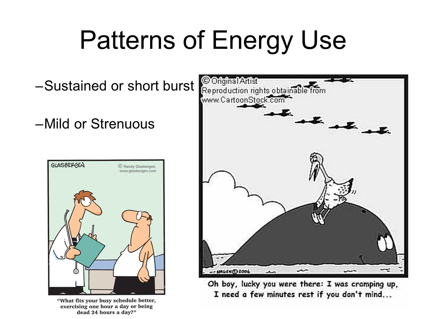 Patterns of Energy Use Sustained or short burst Mild or Strenuous
